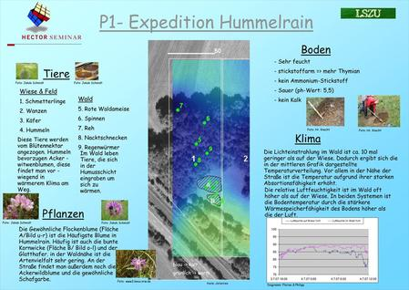 P1- Expedition Hummelrain