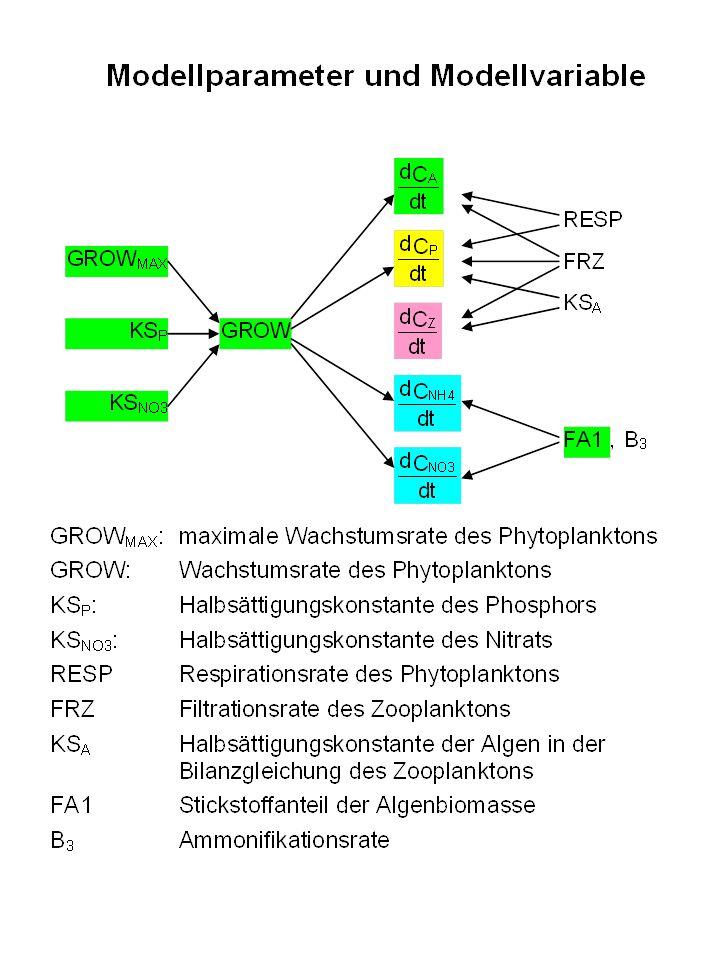 Ergebnisse: Ausgangsvariable CHA, o-PO4-P, NH4-N und NO3-N.