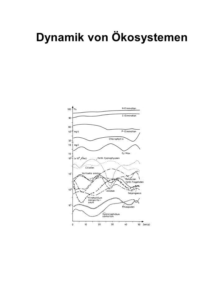 Kurzfristige Dynamik von Ökosystemen