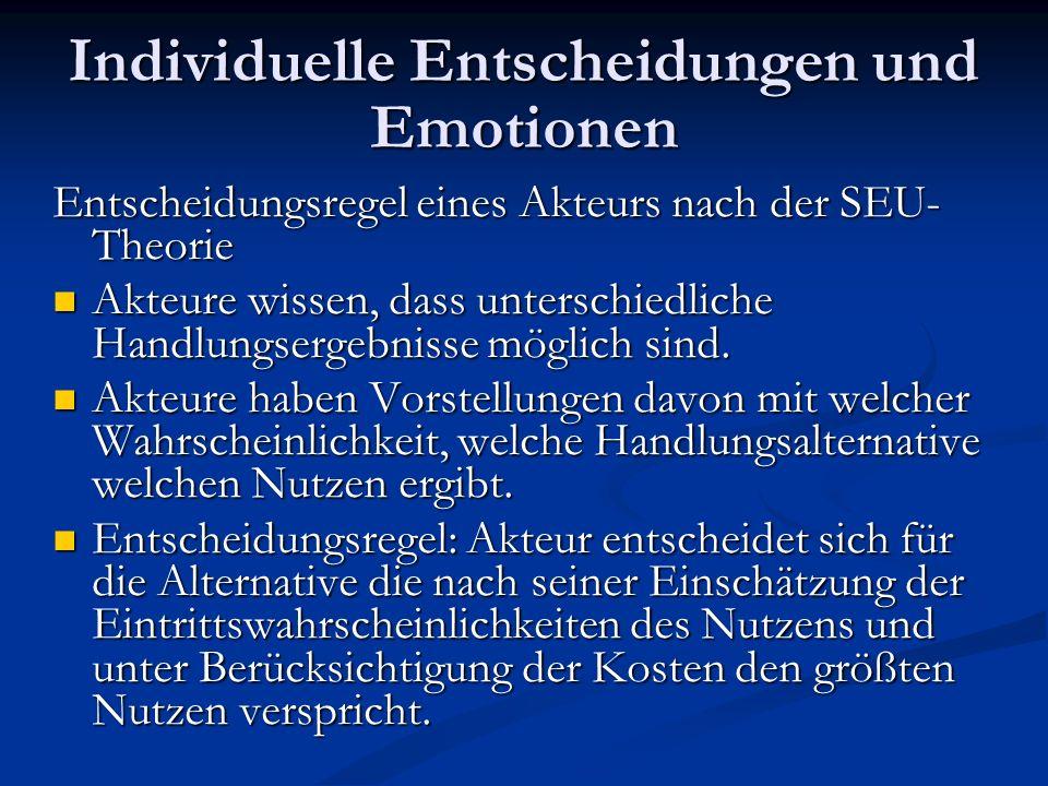 Individuelle Entscheidungen und Emotionen Einflussmöglichkeiten von Emotionen bei der rationalen Entscheidungsfindung: Bewertung der Handlungsziele Bewertung der Handlungsziele Bewertung der Handlungskosten Bewertung der Handlungskosten Kognition der Situation Kognition der Situation
