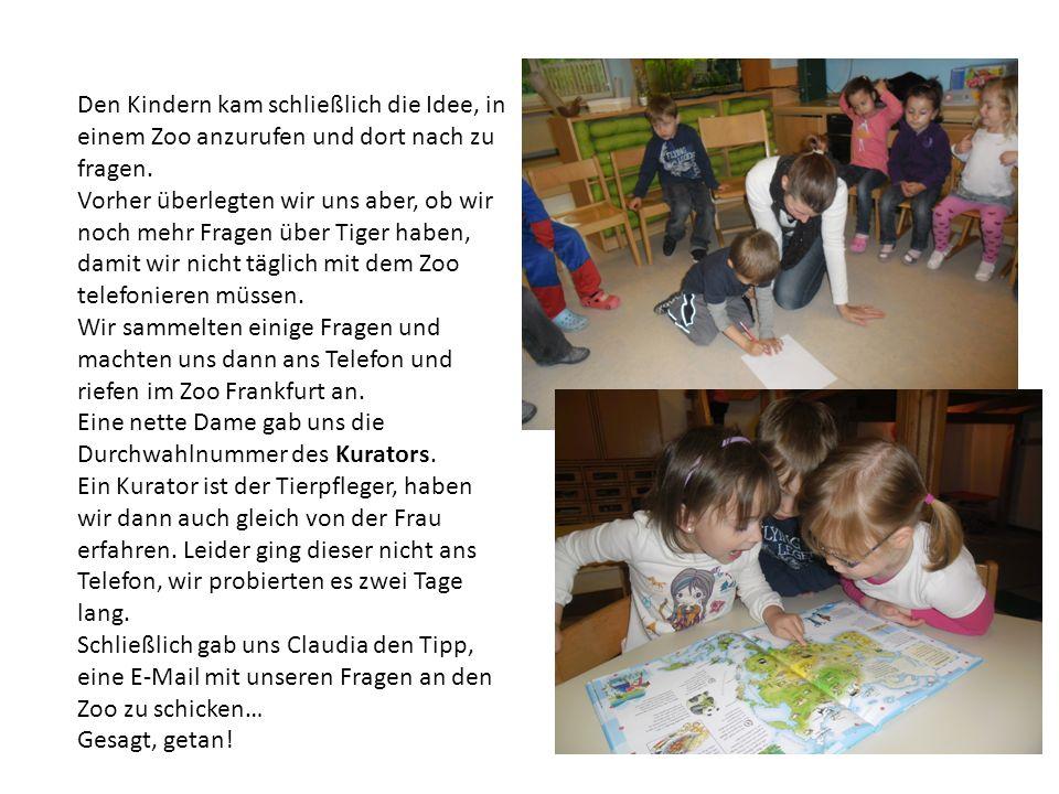 Wir verfassten einen Brief und schickten unsere Fragen per E-Mail an den Frankfurter Zoo… Jetzt warten wir gespannt auf eine Antwort