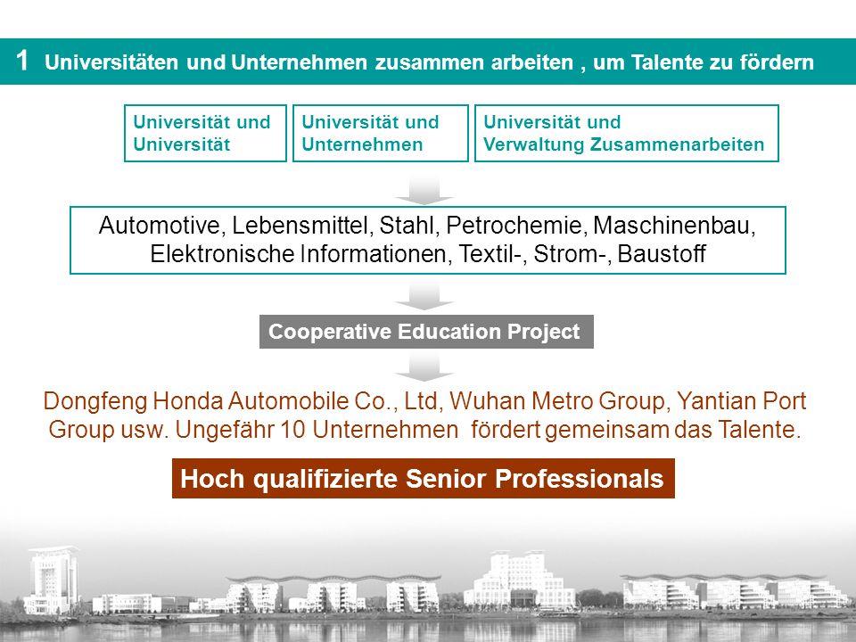 (二)国际化视野下的 双元制 导入 国际交流 德国、荷兰、法国、日本、美国 多样化的中外合作项目 海外带薪实习 交换生 联合培养 短期修读