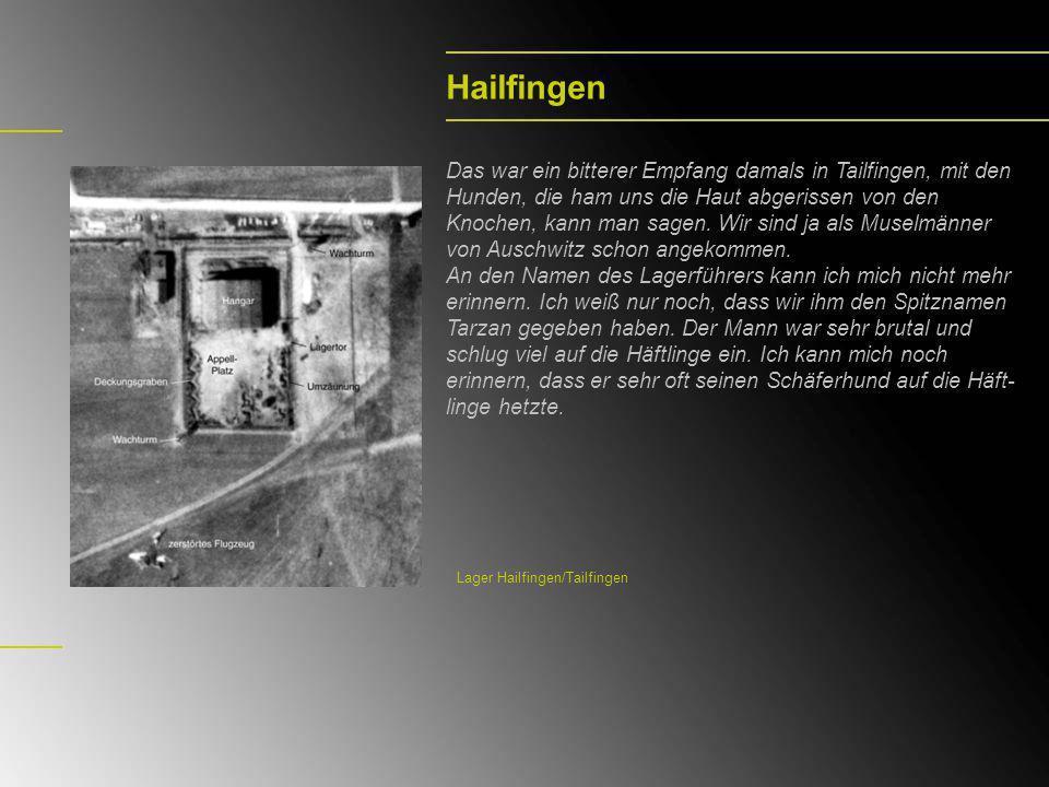 Arbeit im Steinbruch Reusten Wolf Gimpel arbeitete im Kommando im Reustener Steinbruch und musste die Leichen der Häftlinge in Schubkarren zum Massengrab transportieren und dort begraben.
