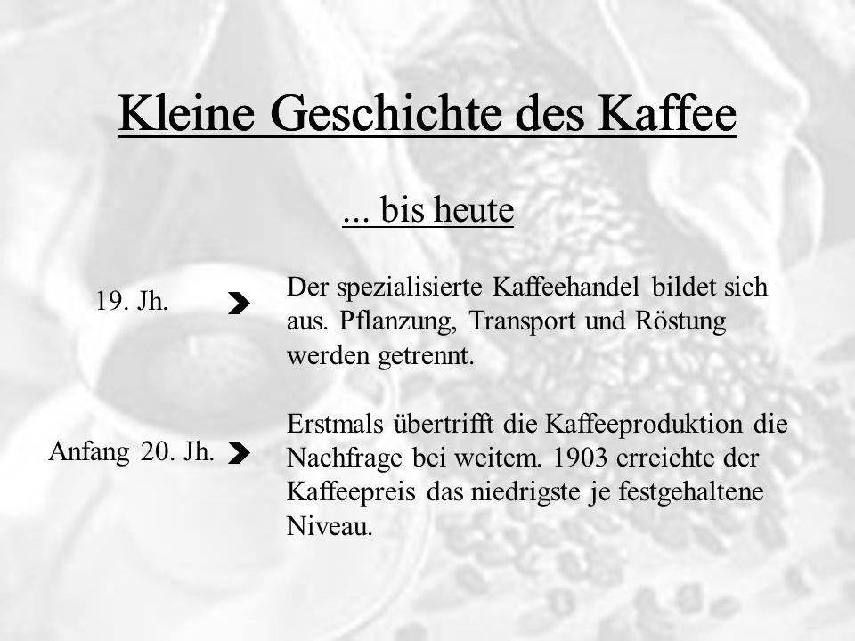 Kleine Geschichte des Kaffee...bis heute Die Kaffeeproduktion wird weiter industrialisiert.