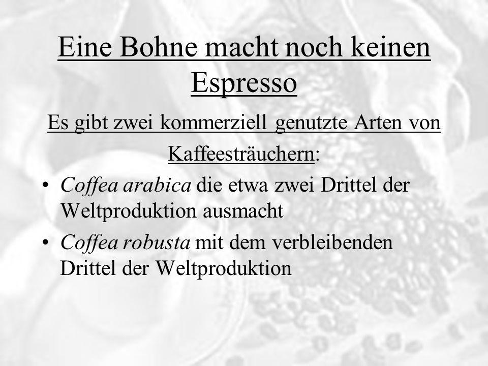 Die Bohnen im Vergleich: Coffea arabicaCoffea robusta Eine Bohne macht noch keinen Espresso