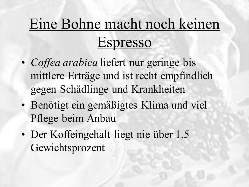 Eine Bohne macht noch keinen Espresso Coffea robusta ist ein wenig krankheitsanfälliger, ertragreicher Baum Gedeiht am besten in tropischem Klima Der Koffeingehalt liegt mit 2,4 bis 2,8 Prozent ziemlich hoch Die Bohnen eignen sich nicht für qualitativ hochwertigen Kaffee