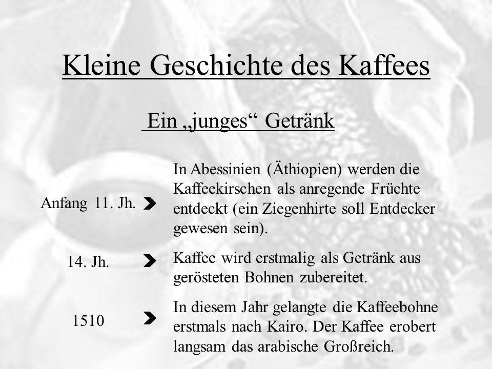 Kleine Geschichte des Kaffees 1470 - 1500 1511 1521 Der Wein des Islam Der Kaffee erreichet Mekka und Medina.