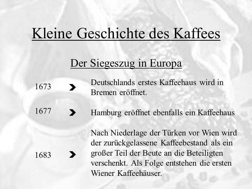 Kleine Geschichte des Kaffee Die Entwicklung des Kaffeegürtel 1699 1715 1722 Dem Holländer Henricus Zwaardecroon gelingt es erfolgreich Pflanzen in der Nähe von Batavia (Java) anzubauen.