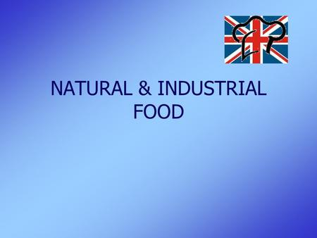 NATURAL & INDUSTRIAL FOOD. Natural & Industrial Food2 TIMELINE & ORGANIZATION  2 groups of 11 pupils  2 lessons per week (120 min)  4 lessons in each.