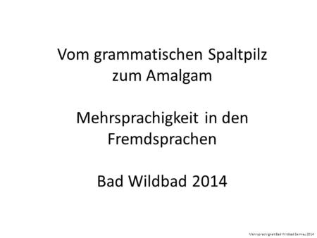 Vom grammatischen Spaltpilz zum Amalgam Mehrsprachigkeit in den Fremdsprachen Bad Wildbad 2014 Mehrsprachigkeit Bad Wildbad Semrau 2014.