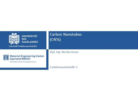 Lehrstuhl Funktionswerkstoffe Carbon Nanotubes (CNTs) Dipl.-Ing. Nicolas Souza Funktionswerkstoffe II.