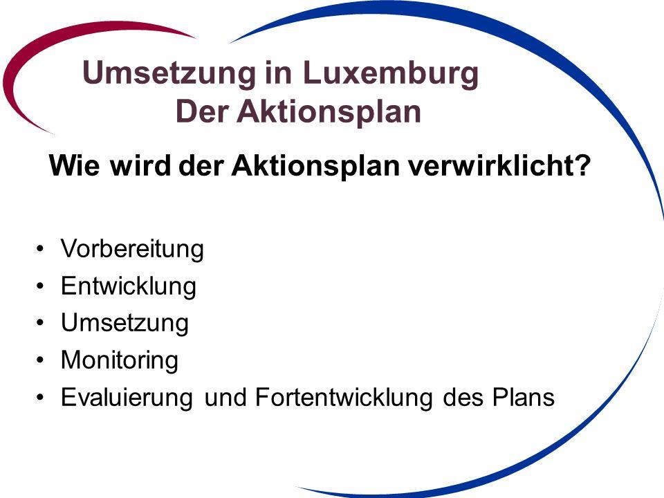 Umsetzung in Luxemburg Der Aktionsplan Ende 2010 Einrichtung einer Steeringgroup - Initiierung eines nationalen Aktionsplans 3.