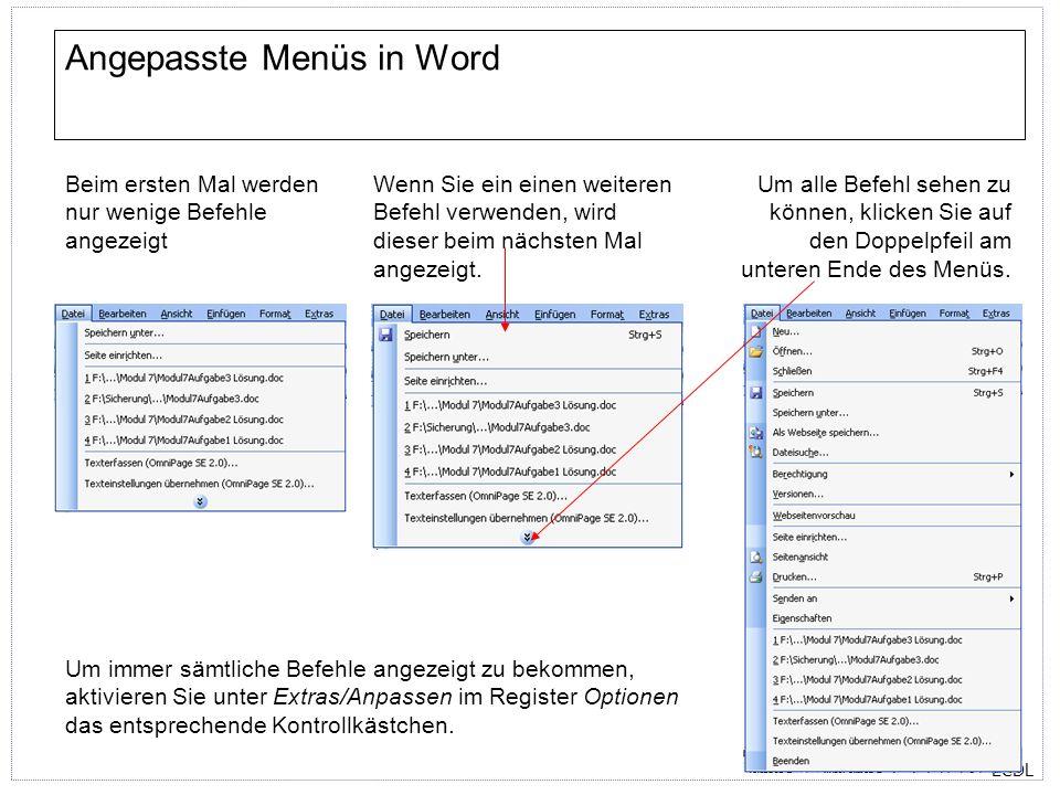 ECDL Aufgabenbereich in Word Wenn Sie eine Aufgabe beginnen, für die es einen Aufgabenbereich gibt, wird dieser automatisch geöffnet.