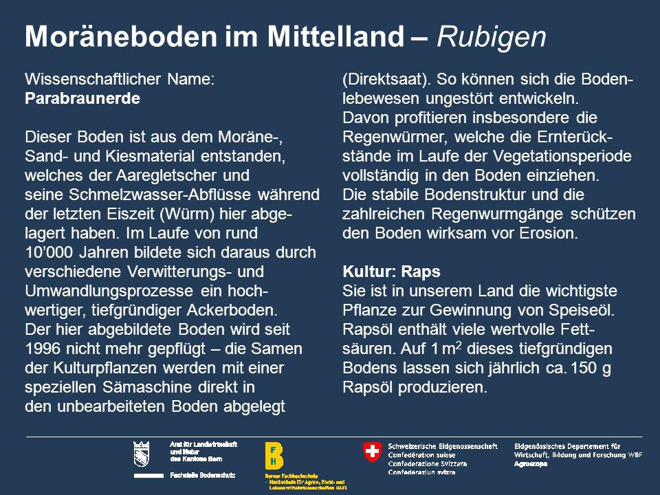 13 Name der Präsentation | Untertitel Autor Moräneboden im Mittelland Zollikofen