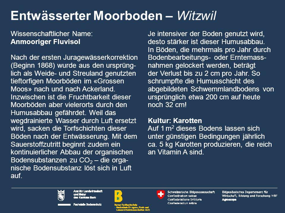 22 Name der Präsentation | Untertitel Autor Moräneboden im Hügelgebiet Zimmerwald