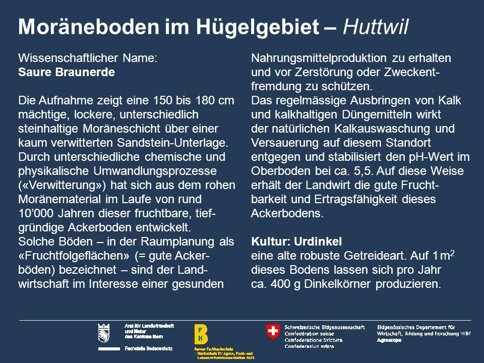 28 Name der Präsentation | Untertitel Autor Saurer Boden im Voralpen- gebiet Saanen