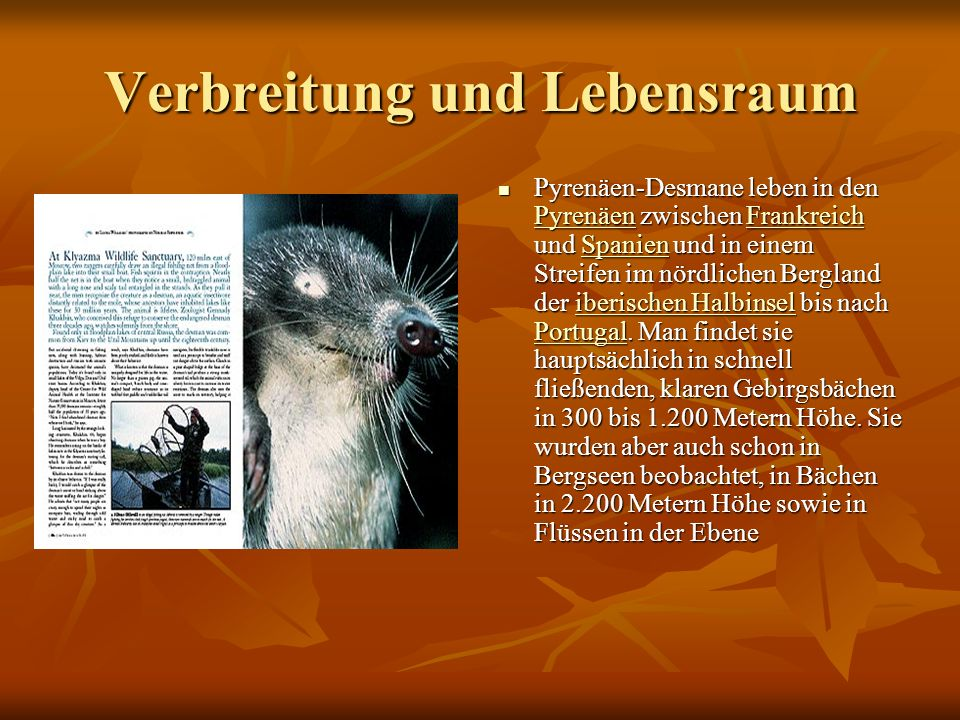 Verbreitung und Lebensraum Pyrenäen-Desmane leben in den Pyrenäen zwischen Frankreich und Spanien und in einem Streifen im nördlichen Bergland der iberischen Halbinsel bis nach Portugal.