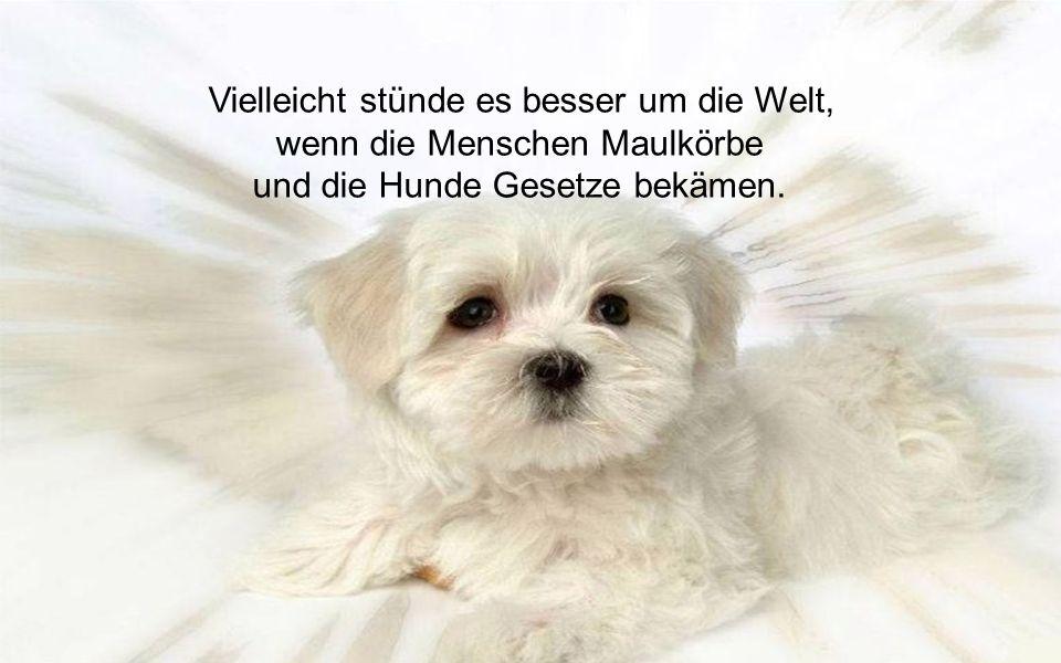 Vielleicht stünde es besser um die Welt, wenn die Menschen Maulkörbe und die Hunde Gesetze bekämen.
