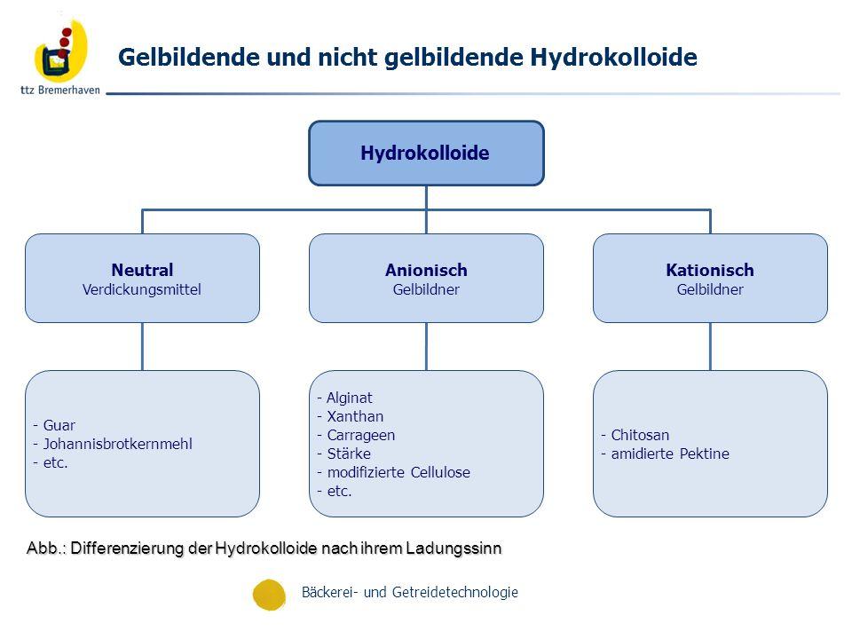 Bäckerei- und Getreidetechnologie Hydrogele Lösungen aus Makromolekülen durch pH-, Temperatur- oder inotrop-induzierte Gelierung Inotroper Gelbildung-Mechanismus Reaktion eines Polyelektrolyten mit entsprechenden Gegenionen (Ca 2+, K, Cu 2+ …) Beispiel: - Gelatine, Agarase, Chitosan (bevorzugt Gelbildung durch Temperatur-Erhöhung sowie Cellulosederivate wie Chitosan) - Koazervation: Polyelektrolyt – Polyelektrolyt-Komplexe (Symplexgele) Beispiel: Cellulosesulfate mit Poly(dimethyl diallyl) ammoniumchlorid Chitosan Molkez.