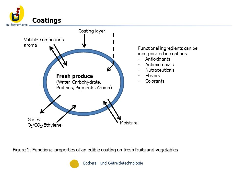 Bäckerei- und Getreidetechnologie Examples of edible coating applications on fruits and vegetables that have been investigated CommodityCoating materialPrimary functionsReferences AppleCaseinate; whey proteinO 2 barrier; carrier (antioxidant)Le Tien and others (2001) Apple (fresh-cut)HPMC Alginate; gelatin, CMC Polysaccharide/lipid bilayer Zein Wax; shellac Carrageenan; WPC WPI-BW emulsion WPI; WPC, HPMC; wax O 2 /H2O barrier O 2 /CO 2 /H 2 O barrier O 2 /CO 2 barrier, gloss O 2 /CO 2 /H 2 O barrier, gloss O 2 /CO 2 barrier O 2 /H 2 O barrier O 2 barrier Cisneros-Zevallos and Krochta (2003) Moldao-Martins and others (2003) Wong and others (1994a, 1994b) Bai and others (2003a) Bai and others (2003b) Lee and others (2003) Perez-Gago and others (2003b) Perez-Gago and others (2005) AvocadoMethylcelluloseO 2 /CO 2 /H 2 O barrierMaftoonazad and Ramaswamy (2005) Carrot (peeled)Xanthan gum Calcium caseinate; WPI; pectin; CMC Alginate H 2 O barrier; Ca 2+, Vit.