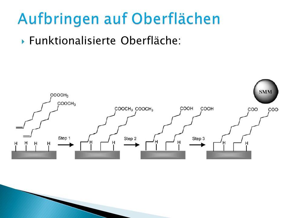 Funktionalisierung von Cluster und Oberfläche: Elektrostatische WW zwischen pos.