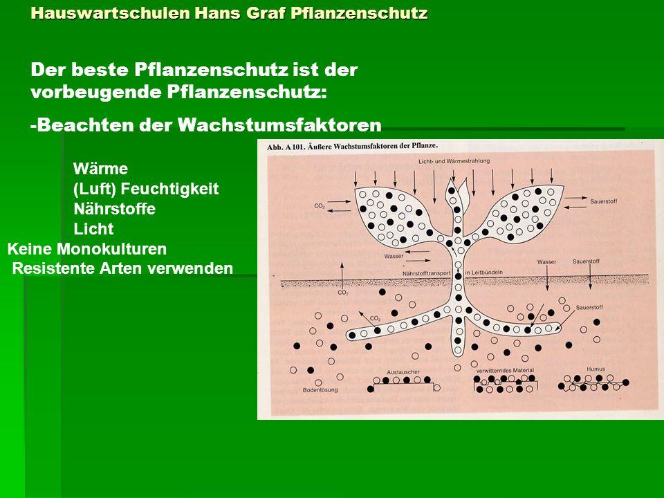 Pflanzenschutz Biologische und mechanische Methoden Mechanischer Pflanzenschutz: Abwehren: Große Netze über Obstgehölze verhindern, daß Vögel die Früchte fressen.