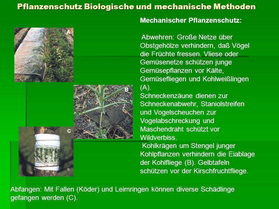 Nützlinge und Schädlinge im Garten Das richtige Erkennen von Nützlingen und Schädlingen im Garten ist wichtig, um Erstere zu schützen und Zweitere bekämpfen zu können.