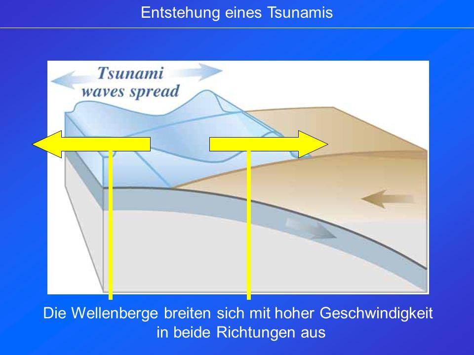 Entstehung eines Tsunamis Ab Stärke 7.5 auf der Richterskala wird ein Tsunami aus- gelöst.
