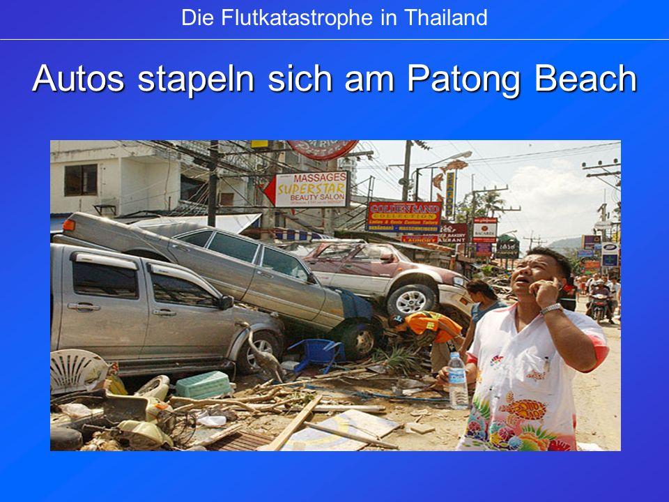 Flutopfer werden in einem Hospital in Krabi versorgt Die Flutkatastrophe in Thailand