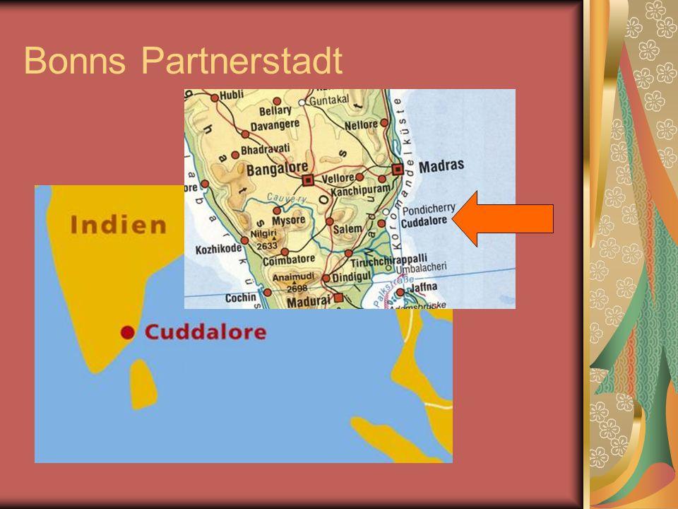 Zerstörungsausmaß in Cuddalore 14 Dörfer zerstört 15.000 Häuser zerstört Existenzgrundlage zerstört 80.000 Menschen betroffen, 7.000 davon schwer verletzt 150 Flutopfer