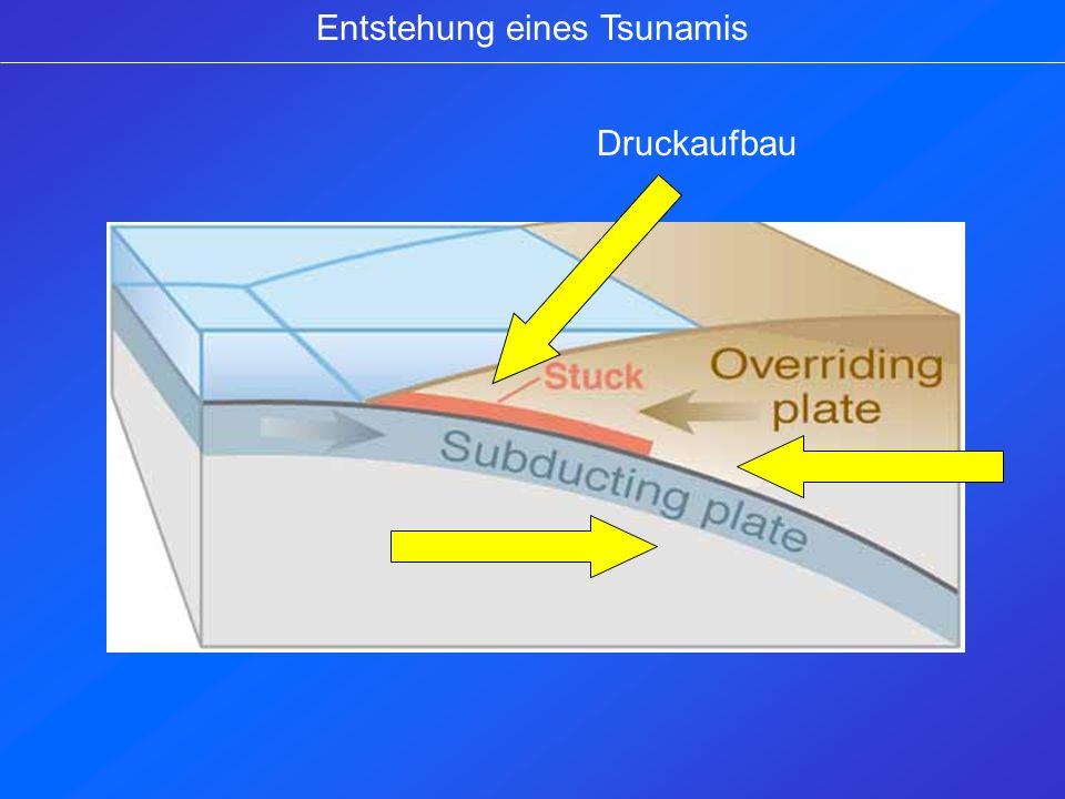 Entstehung eines Tsunamis Druck entlädt sich in Form eines Erdbebens Ein Wellenberg baut sich als Folge auf