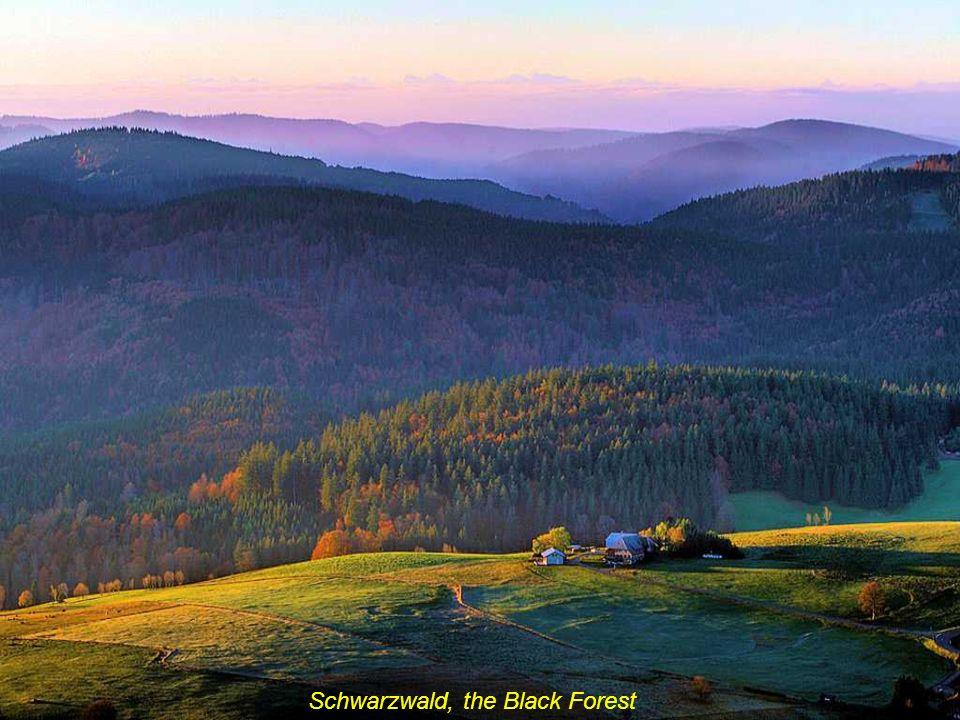 Schwarzwald, the Black Forest
