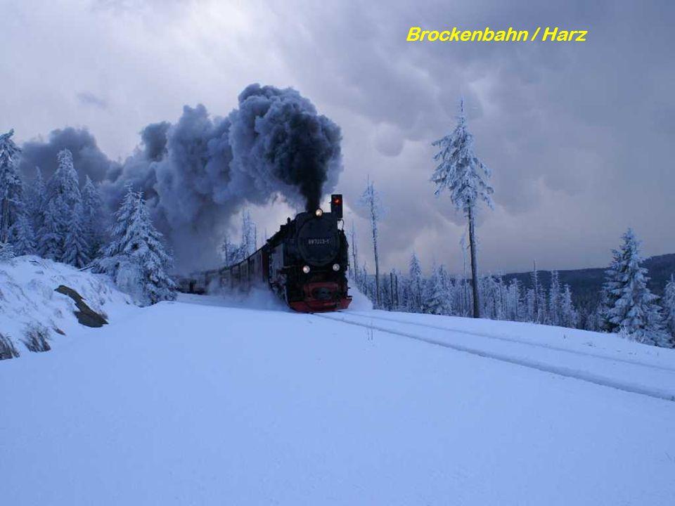 Brockenbahn / Harz