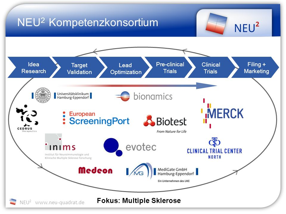 NEU 2 www.neu-quadrat.de Complexity Success factors Target Know-How Process Know-How Indication expertiseProcess Know-HowClinical expertise time Target Identification (u)HTS Hit Profiling (Biology, ADME/T) Focused Libraries Lead Optim., Med.