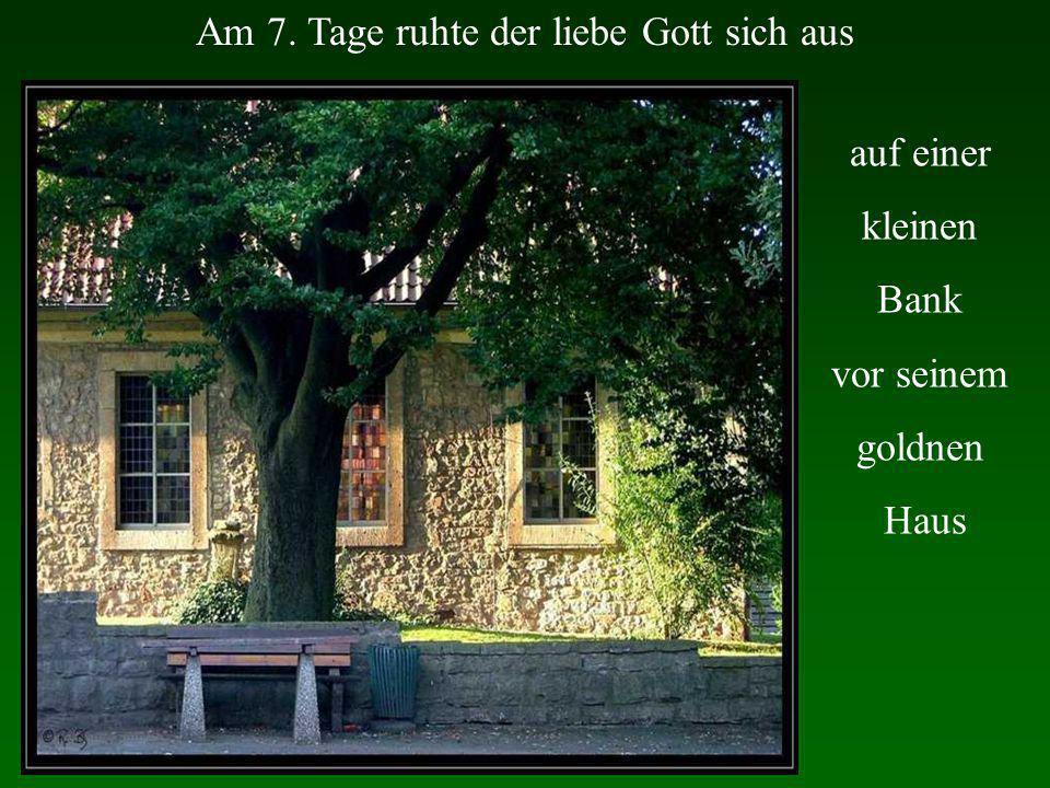 Am 7. Tage ruhte der liebe Gott sich aus auf einer kleinen Bank vor seinem goldnen Haus