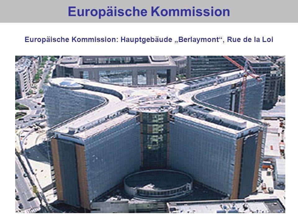 EU: Kommissare Lady Ashton (Vizepr.) José Manuel Barroso (Präsident) Viviane Reding (Vizepr.) 24 weitere Kommissare, darunter weitere 5 Vizepräsidenten Günther Oettinger László Andor Johannes Hahn