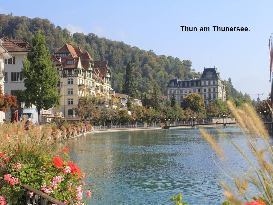 Thun am Thunersee.