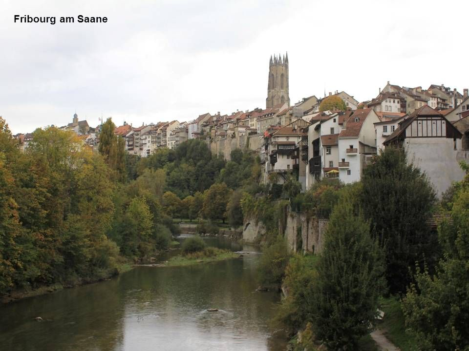 Fribourg am Saane