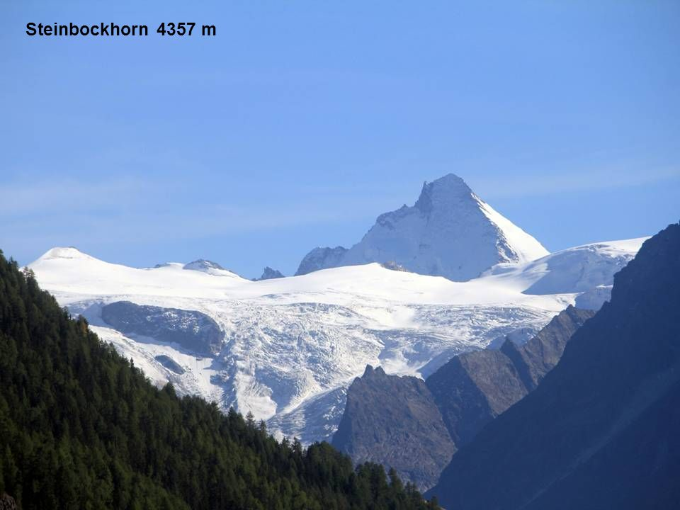 Steinbockhorn 4357 m