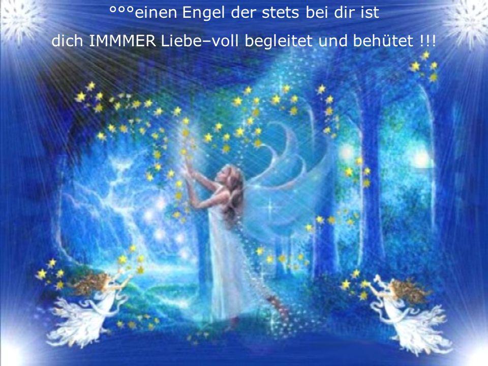 °°°einen Engel der stets bei dir ist dich IMMMER Liebe–voll begleitet und behütet !!!