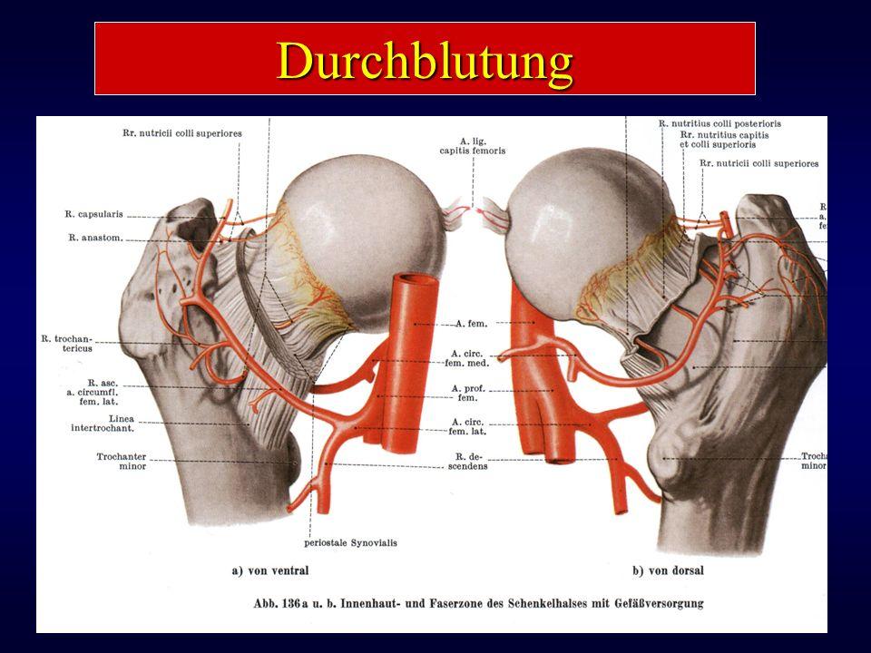 Kopfdurchblutung ist kritisch