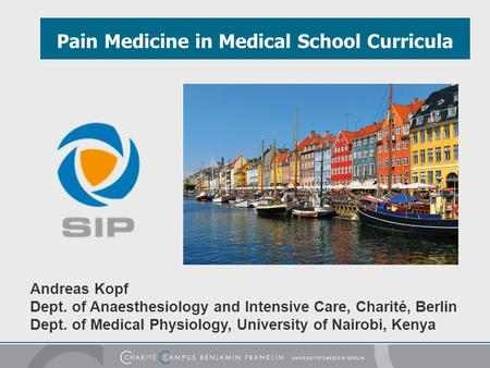 Pain Medicine in Medical School Curricula Andreas Kopf Dept. of Anaesthesiology and Intensive Care, Charité, Berlin Dept. of Medical Physiology, University.