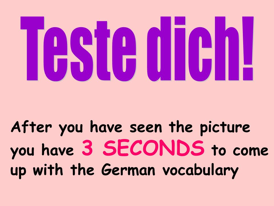 After you have seen the picture you have 3 SECONDS to come up with the German vocabulary