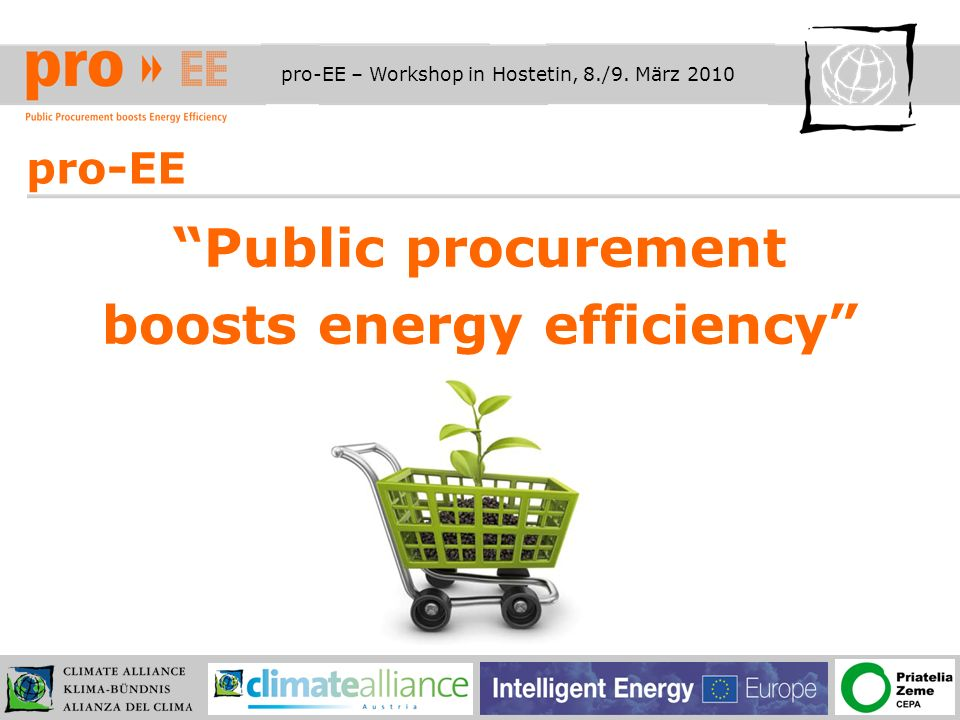 pro-EE – Workshop in Hostetin, 8./9.März 2010 Fakten zum Projekt pro-EE Projektlaufzeit – Nov.