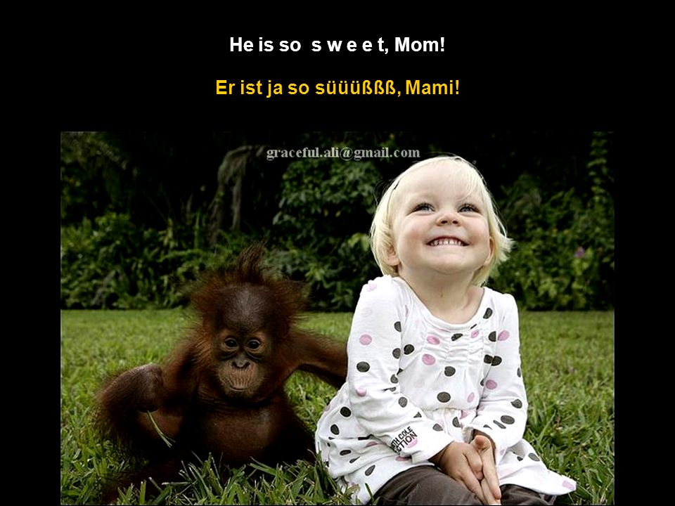 Er ist ja so süüüßßß, Mami! He is so s w e e t, Mom!