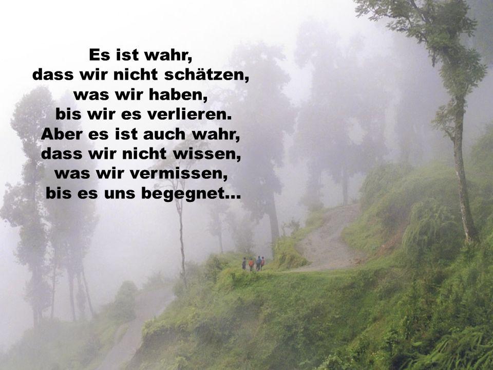 Es ist wahr, dass wir nicht schätzen, was wir haben, bis wir es verlieren.