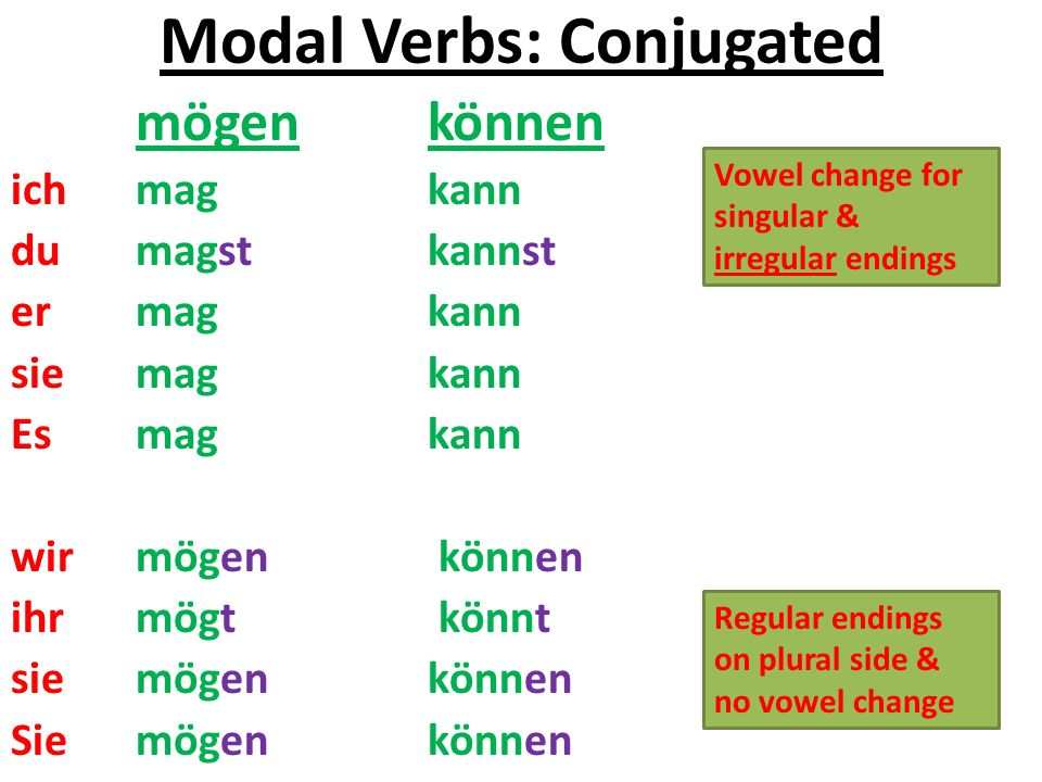 Modal Verb Rules 1.ich and er, sie, es forms have no endings 2.