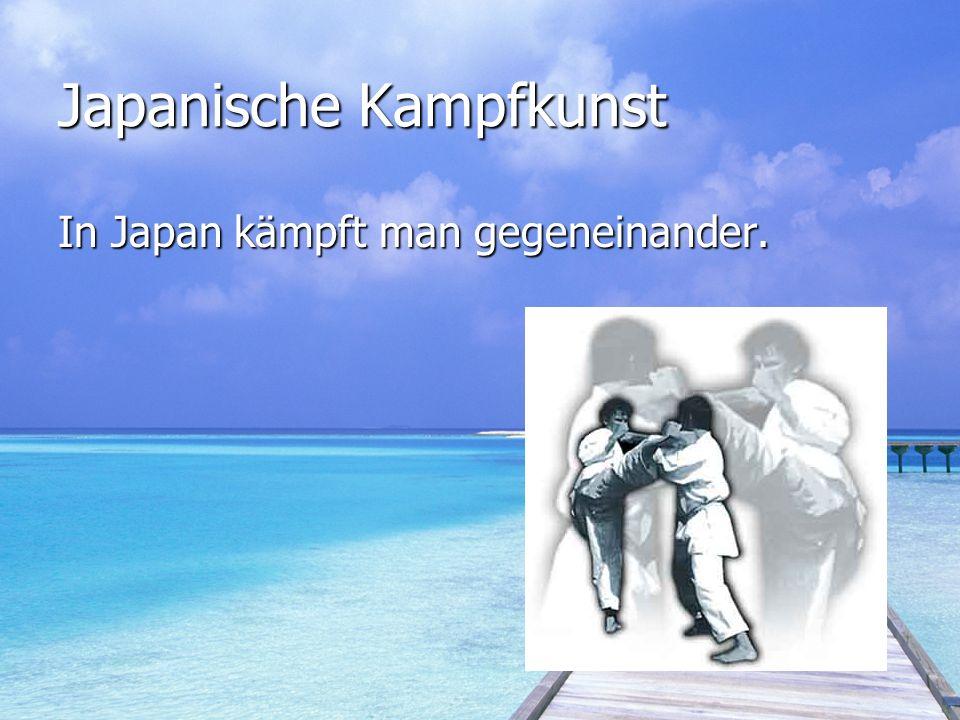 Die letzte Frage.Was ist der unterschied zwischen Shozindo und Japanischer Kampfkunst.