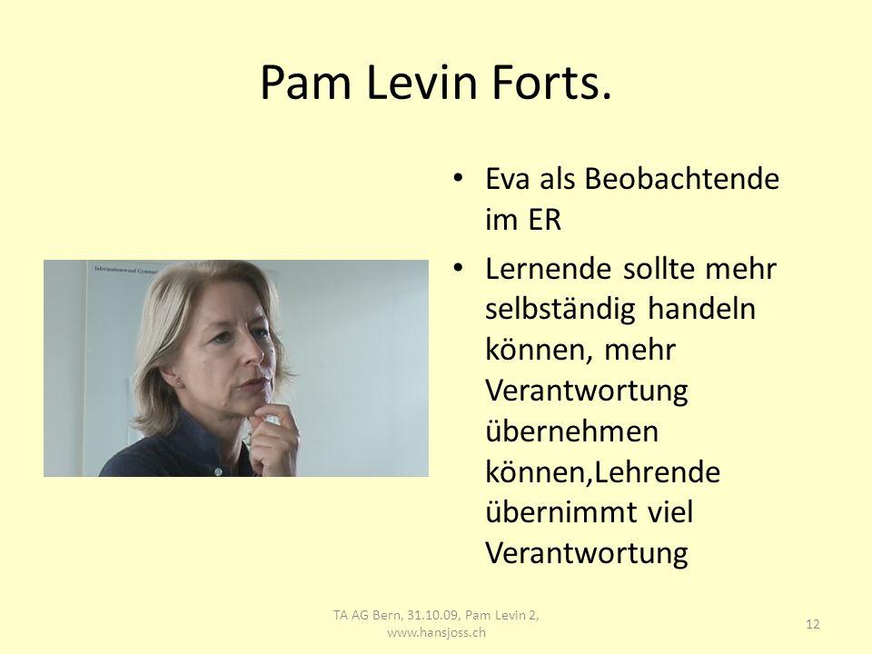 Pam Levin, Forts. 13 TA AG Bern, 31.10.09, Pam Levin 2, www.hansjoss.ch