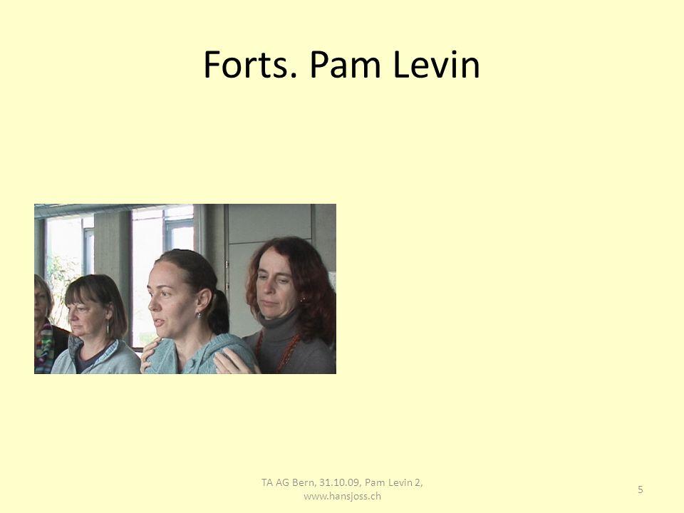 Pam Levin Konstruktive Variante, Barbara identifiziert sich mit geführter Lernender 6 TA AG Bern, 31.10.09, Pam Levin 2, www.hansjoss.ch